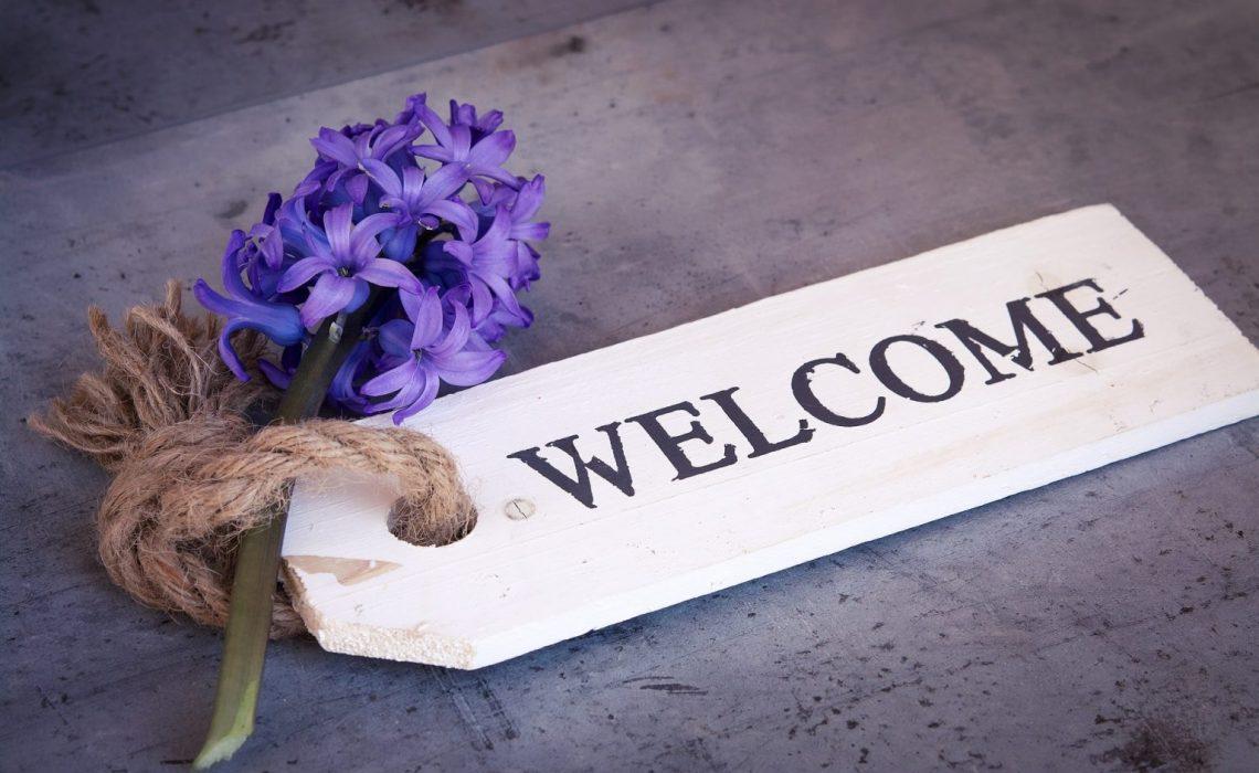 hyacinth-1398833_1920-1536x1024-1